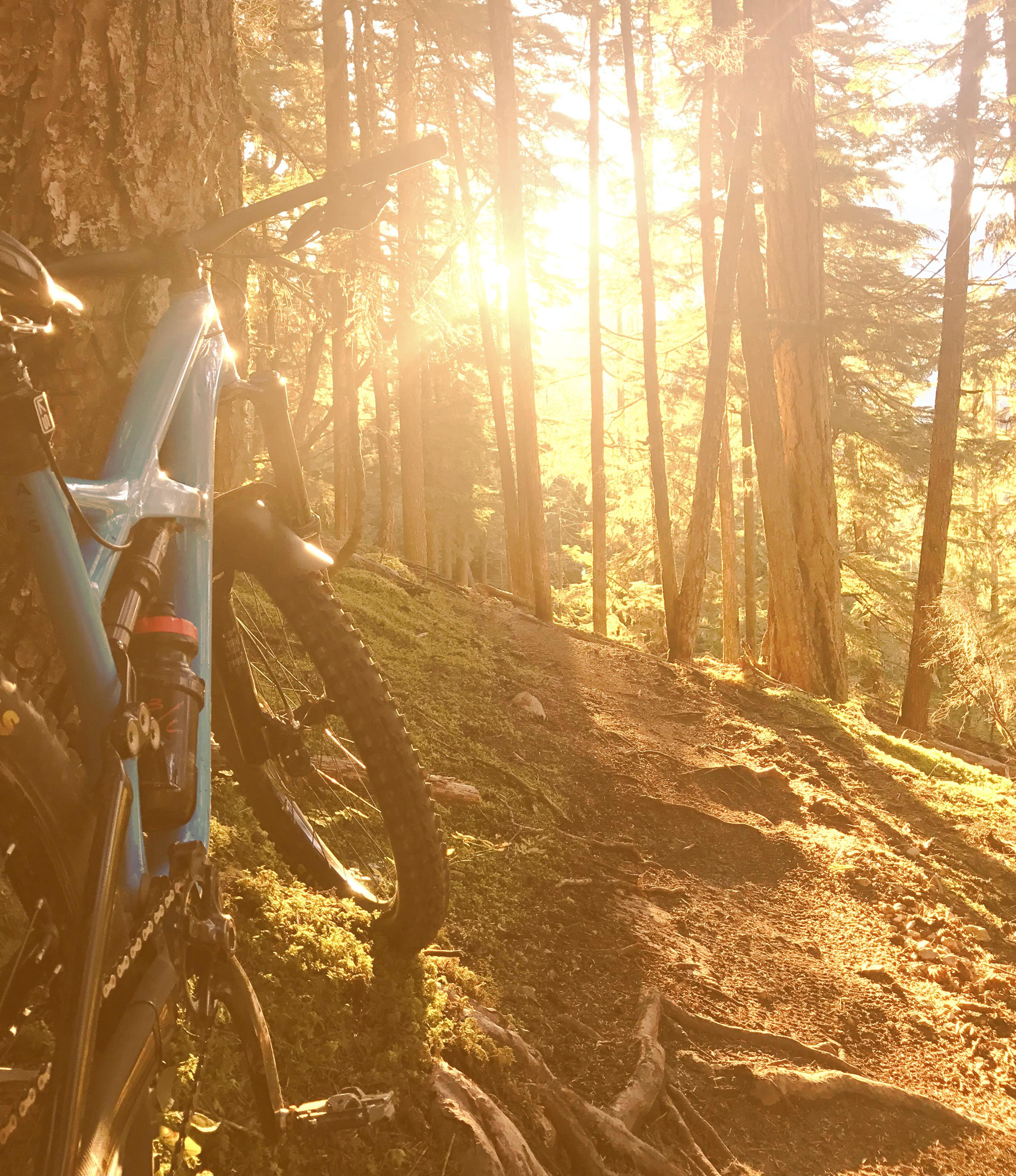 Certified Bike Guide successfully accomplished   Whistler Adventure