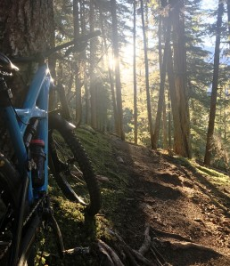 2018 Bike Guide Whistler